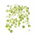 Chlorelle Bio comprimés 50 gr